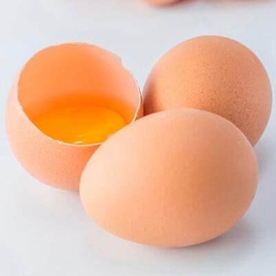 pasteurized egg